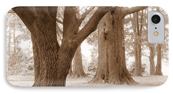 IPhone Case featuring the photograph Mighty Oaks by Jim Whalen