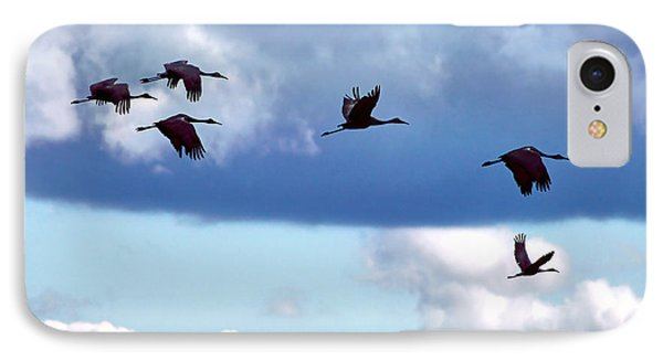 IPhone Case featuring the photograph Migration by Adam Olsen