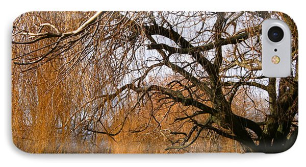 IPhone Case featuring the photograph Mild Winter In Mayesbrook Park - Dagenham by Mudiama Kammoh