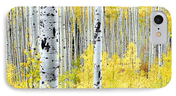 Miles Of Gold Phone Case by The Forests Edge Photography - Diane Sandoval