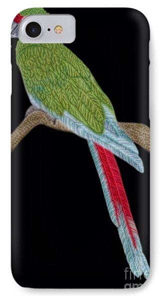 Military Macaw IPhone Case by Walter Colvin