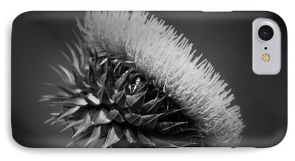 Milk Thistle Bw IPhone Case by Maria Urso