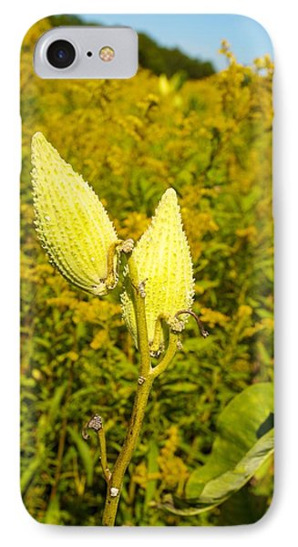 Milkweed Pods IPhone Case by Allan Morrison