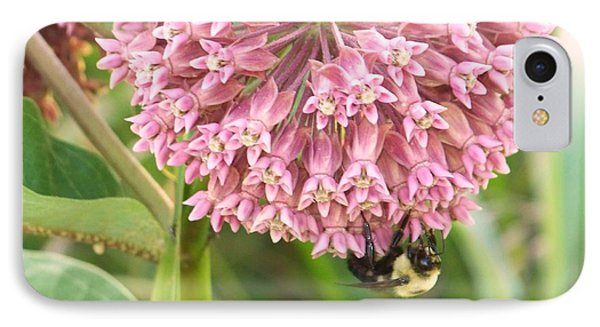 IPhone Case featuring the photograph Milkweed by Shirley Moravec