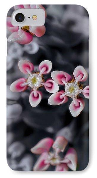 Milkweed Snowflakes IPhone Case by Henry Kowalski
