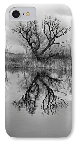 Mill Pond Tree IPhone Case