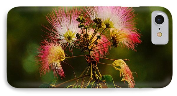 Mimosa Blooms IPhone Case
