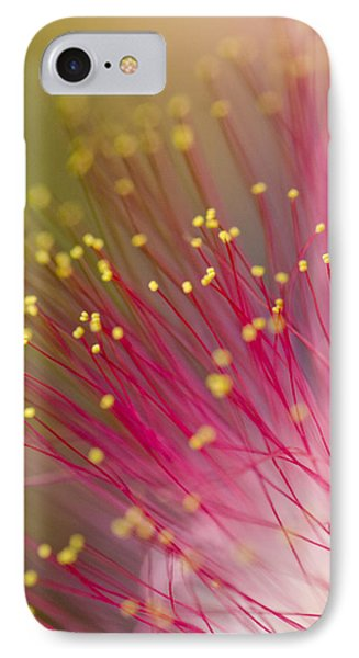 Mimosa Blossom 3 IPhone Case