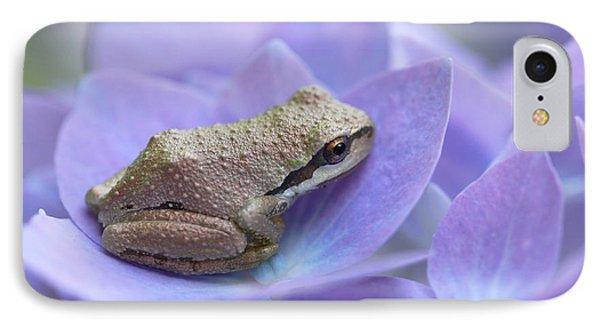 Mini Frog On Hydrangea Flower  IPhone Case by Jennie Marie Schell