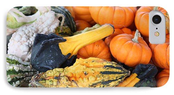 Mini Pumpkins And Gourds Phone Case by Cynthia Guinn