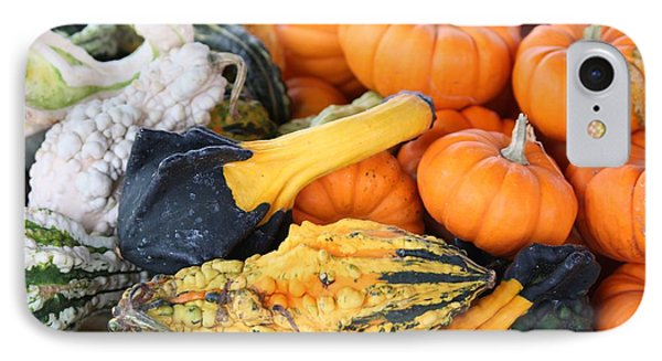 IPhone Case featuring the photograph Mini Pumpkins And Gourds by Cynthia Guinn