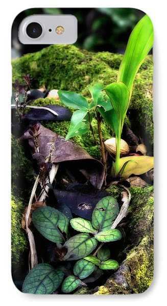 IPhone Case featuring the photograph Miniature Garden by Jim Thompson