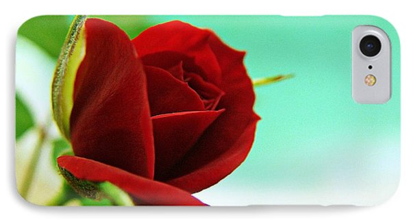Miniature Rose IPhone Case by Kathy Churchman