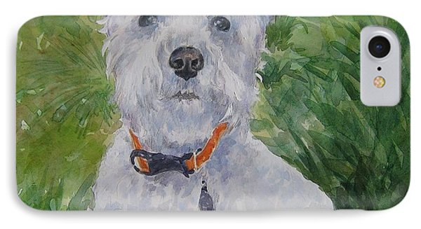 Miniature Schnauzer IPhone Case by Gloria Turner