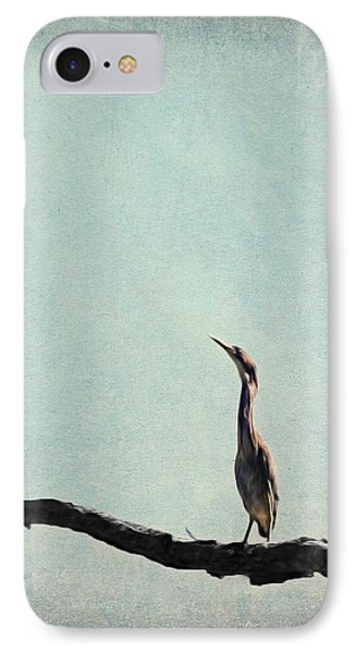Minimalist Vintage Inspired Green Heron On Pale Blue Sky IPhone Case by Brooke T Ryan