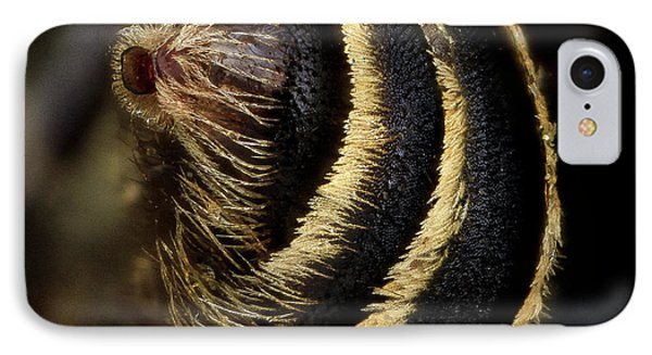 Mining Bee Abdomen IPhone Case by Us Geological Survey
