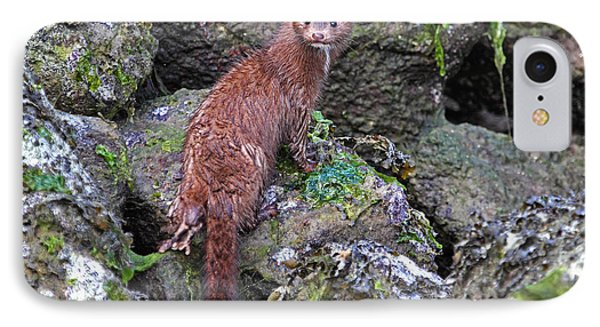 IPhone Case featuring the photograph Mink At Low Tide by Peggy Collins