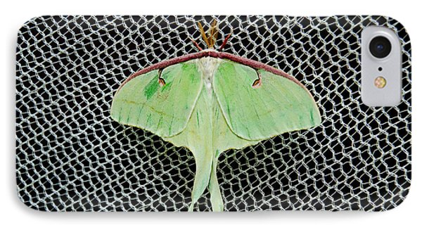 Mint Green Luna Moth Phone Case by Andee Design