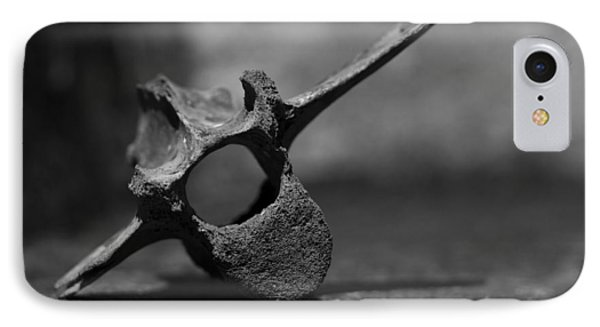 IPhone Case featuring the photograph Miocene Fossil Whale Vertebra by Rebecca Sherman
