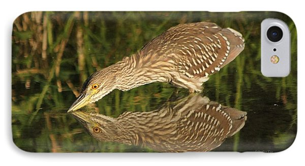 Mirror Mirror On The Wall Who Is The Fairest Heron Of All IPhone Case by Heather King