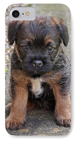 Miss You - Border Terrier Puppy IPhone Case by Gill Billington