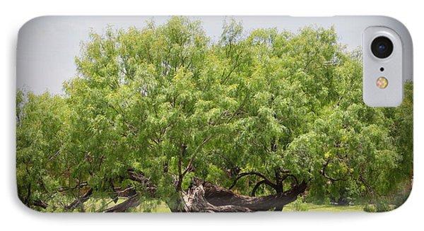 Mission Espada - Tree IPhone Case