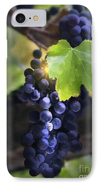 Mission Grapes II Phone Case by Sharon Foster