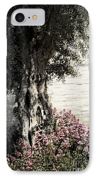 IPhone Case featuring the photograph Mission San Jose Tree Dedicated To The Ohlones by Ellen Cotton