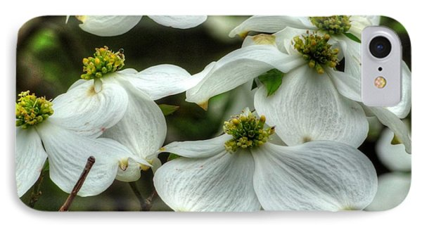IPhone Case featuring the photograph Mississippi Dogwood II by Lanita Williams