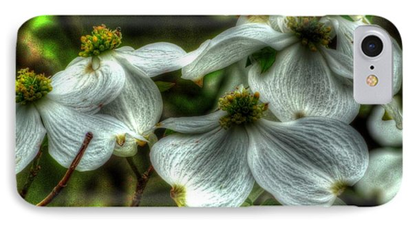 Mississippi Dogwood IPhone Case by Lanita Williams
