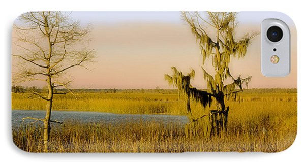 Mississippi Farragut Lake IPhone Case by Manuel Lopez