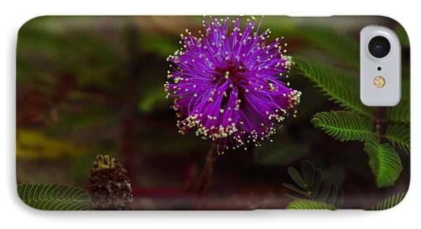 IPhone Case featuring the photograph Mississippi Flower by Silke Brubaker
