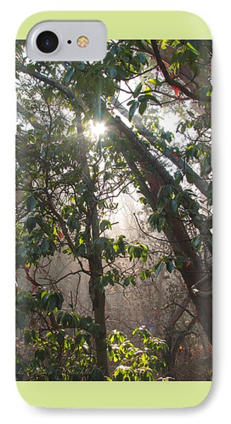 IPhone Case featuring the photograph Mist Y Madrona by Brooks Garten Hauschild