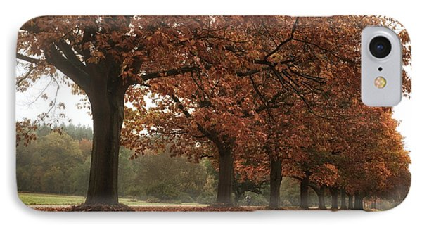 Misty Colours Of Autumn IPhone Case by Shirley Mitchell