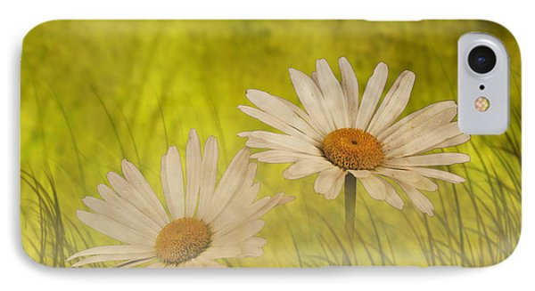 IPhone Case featuring the photograph Misty Daisies by Shirley Mangini