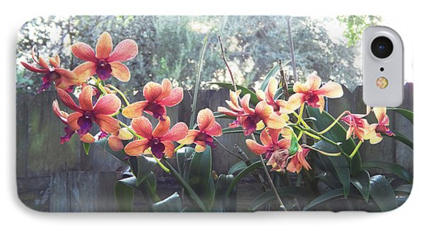 Misty Orchids IPhone Case by Ginny Schmidt