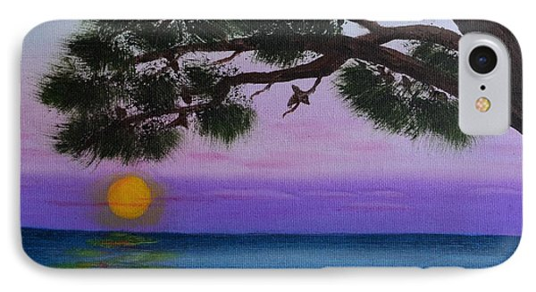 Mobile Bay Sunset IPhone Case by Melvin Turner