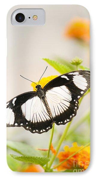 Mocker Swallowtail Phone Case by Anne Gilbert