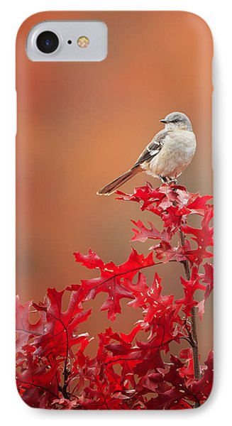 Mockingbird Autumn IPhone Case by Bill Wakeley