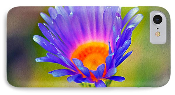 Mojave Aster IPhone Case by Joe Schofield