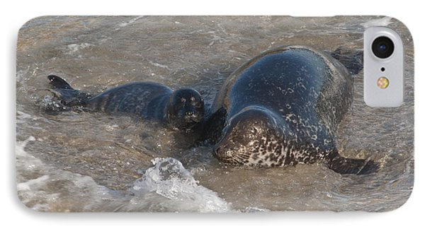 IPhone Case featuring the photograph Mom And Baby Harbor Seal by Lee Kirchhevel