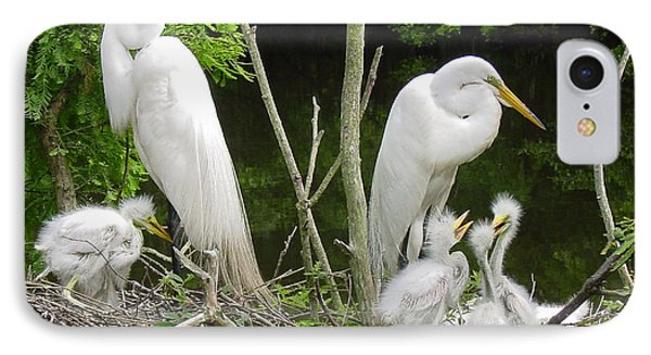 Mom And Pop And Chicks IPhone Case by Suzanne Gaff