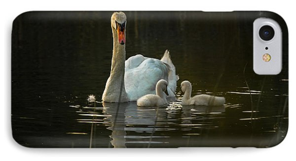 Mom And The Kids IPhone Case by Peter Scott