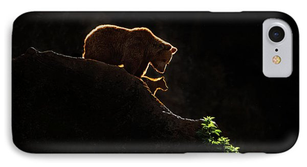 Mom Bear With Cub IPhone 7 Case