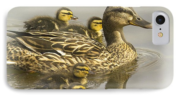 Momma And Babies IPhone Case by Sonya Lang