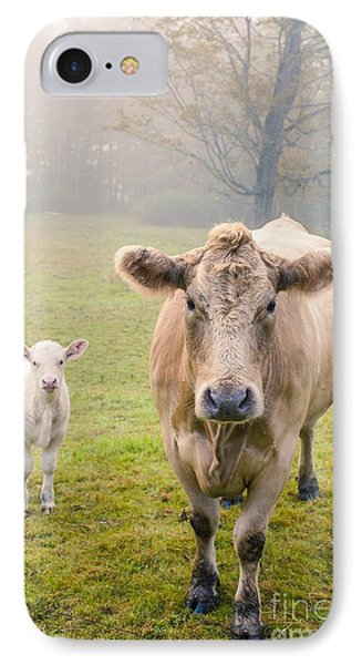 Momma And Baby Cow IPhone Case by Edward Fielding