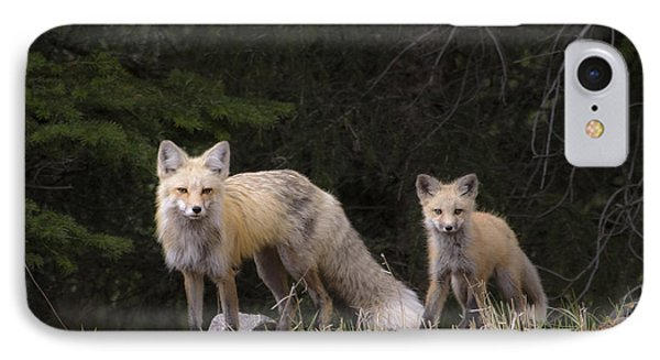 Momma Fox With Her Kit IPhone Case by Sonya Lang