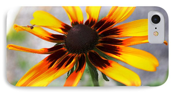 Mom's Black Eyed Susan Phone Case by Judy Palkimas