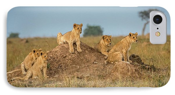 Lion iPhone 7 Case - Mom's Coming Back - Dinner Is Almost Here. by Jeffrey C. Sink