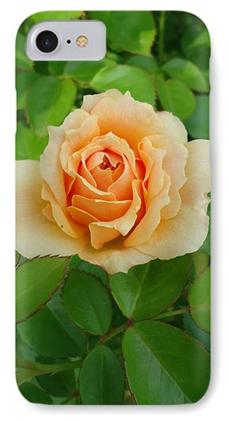 Mom's Rose IPhone Case